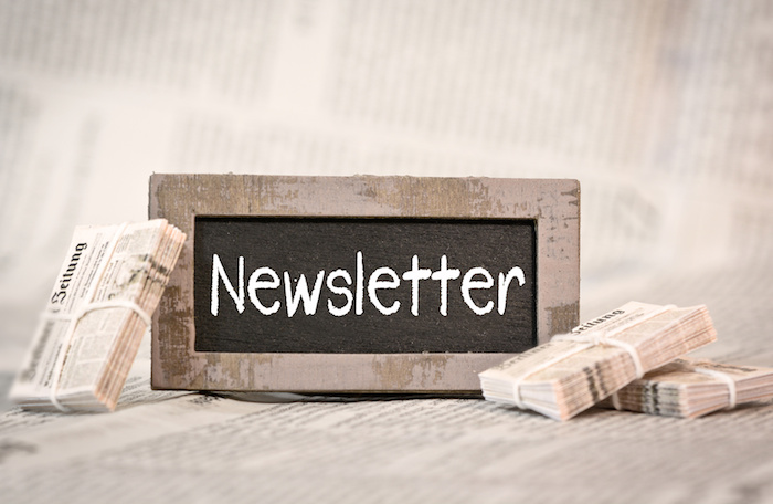 A Guide for Using Newsletter Subscription for Your Ecommerce Store
