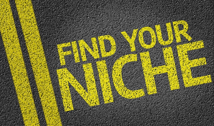 How to find the right niche and target ecommerce market?